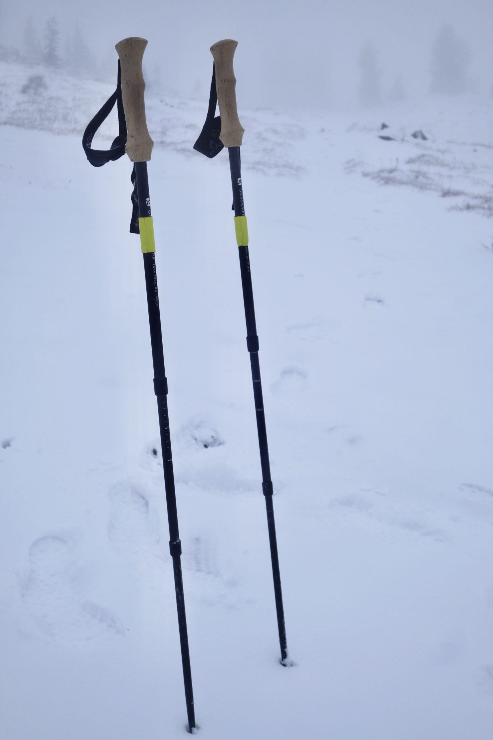 lt5 carbon trekking poles