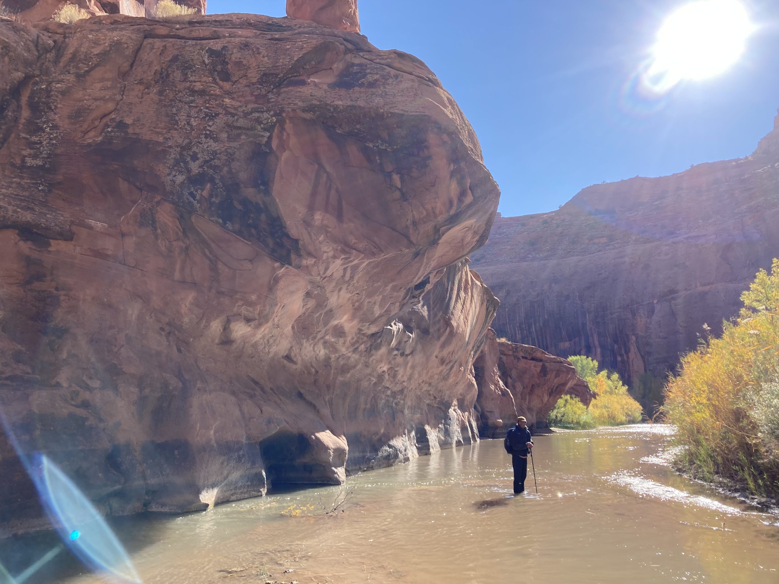 Blogger stands in calf deep cold Escalante River with sunshine and overhanging cliffs above