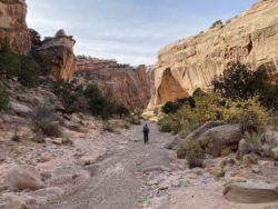 A hiker walking through canyon of the desert southwest