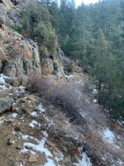 A Trail in Colorado