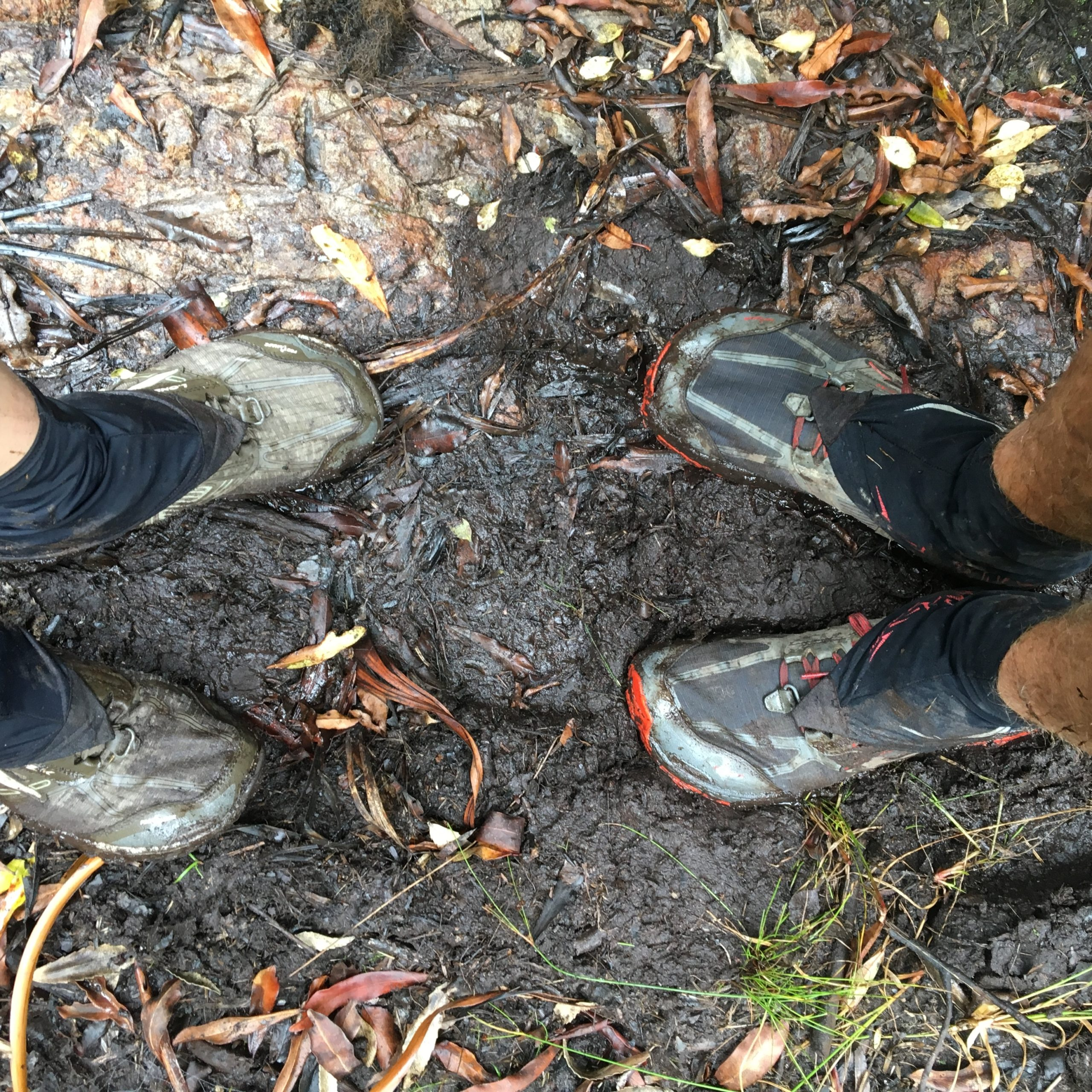 Used Hiking shoe s on a muddy trail