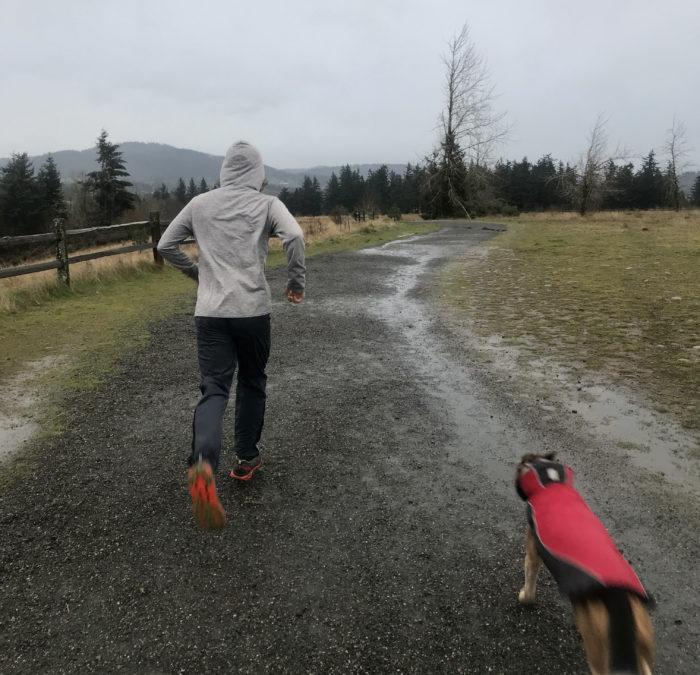 capilene cool daily hoodie