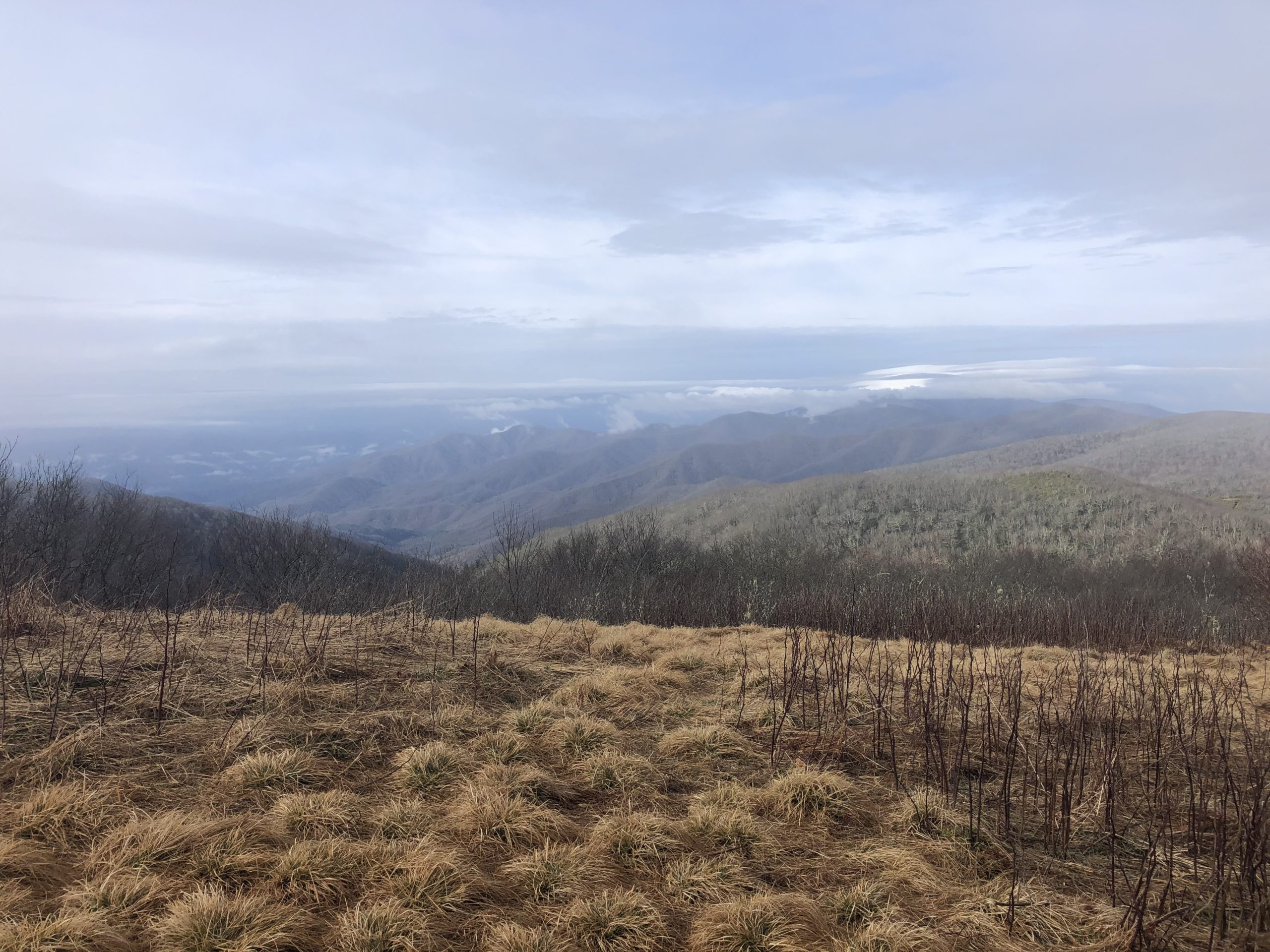 I hiked 200 miles of the Appalachian Trail