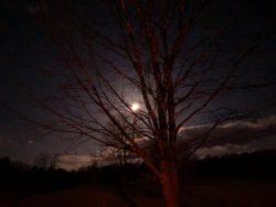 Full moon in VA