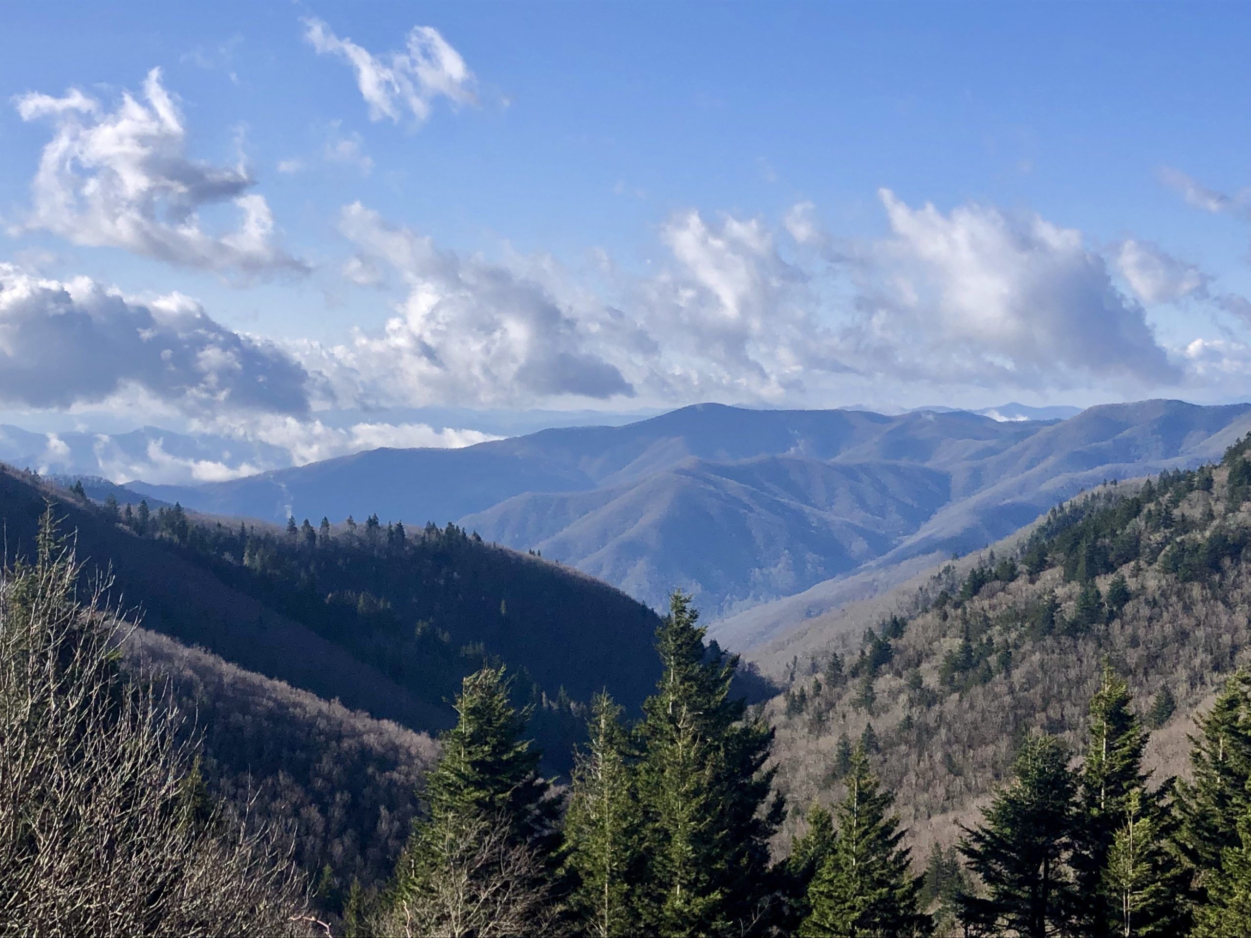 Photo of The One with the Smokies [AT mile 165.9-239.1]