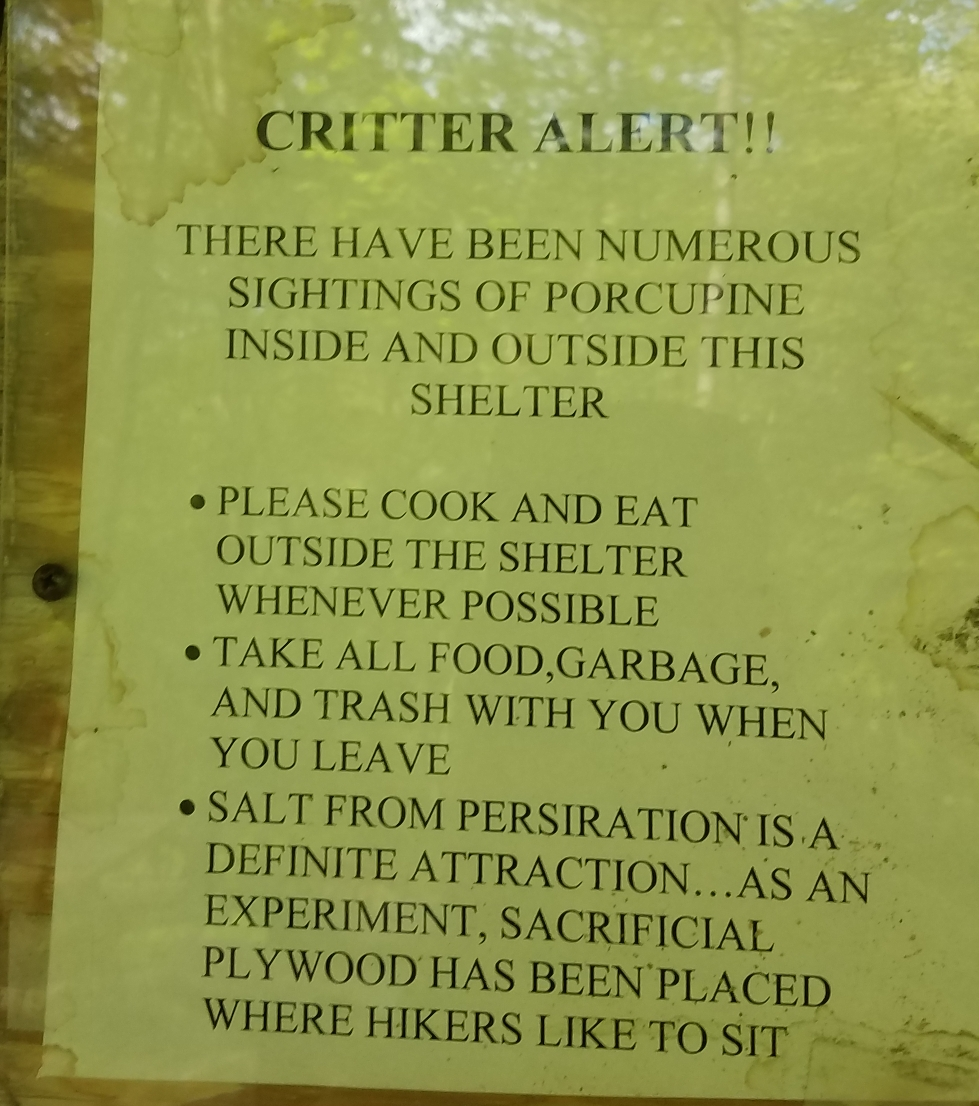 Sign at a shelter indicating high porcupine presence in the area