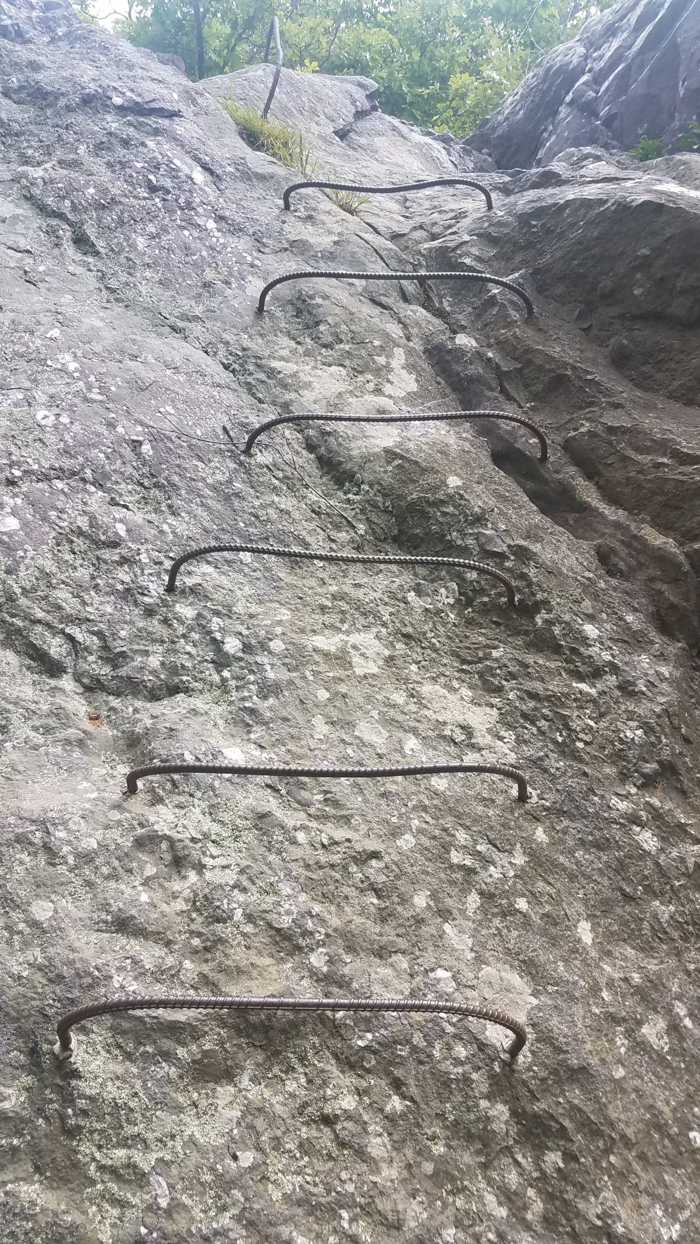 rebar ladder drilled into rocks on the trail
