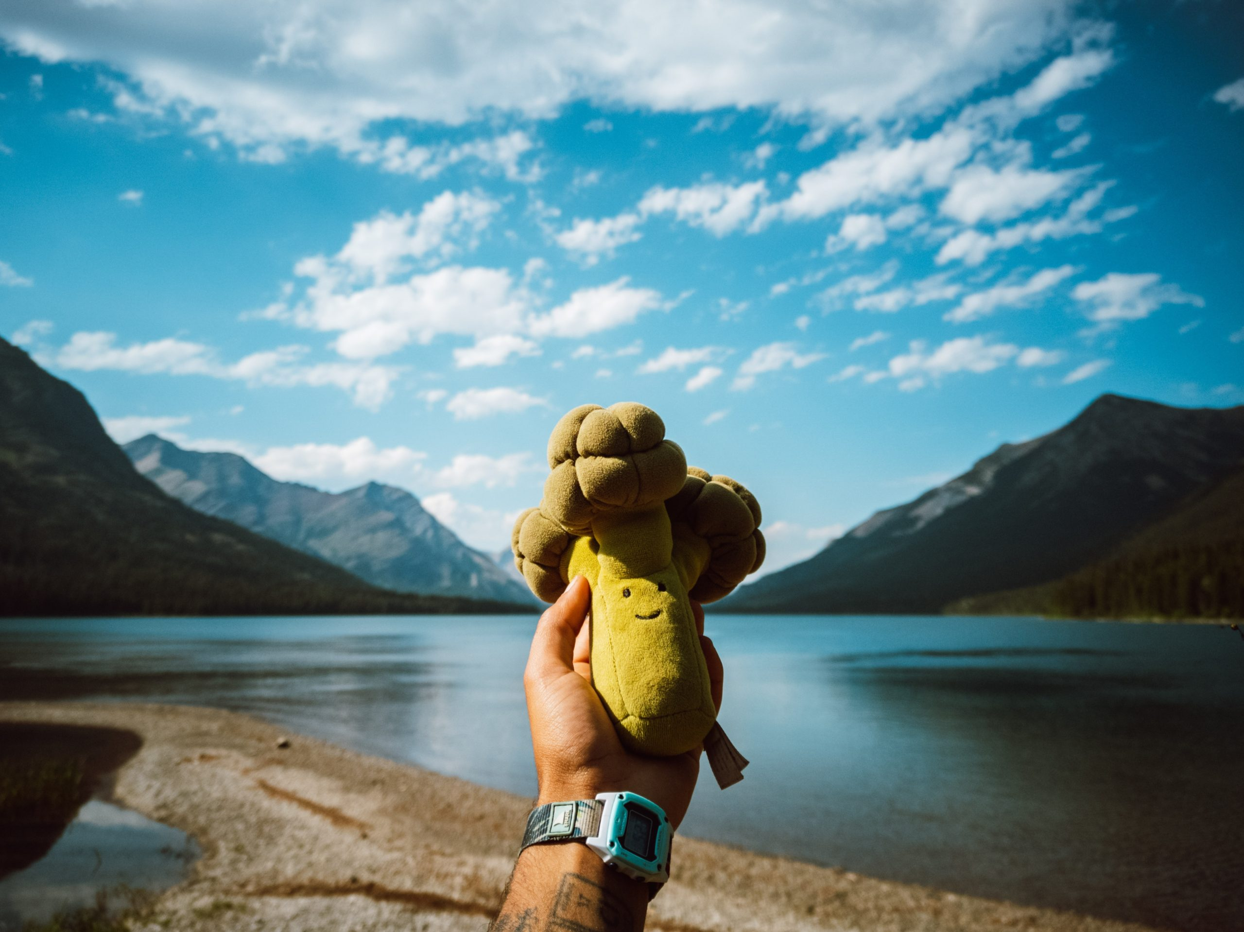 A hand is holding a stuffed broccoli plushie in front of a lake that is lined with mountains